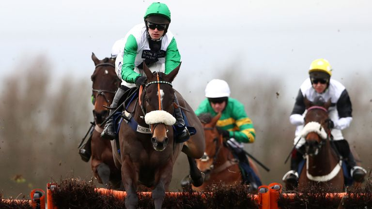 Vinndication: Won't run at Cheltenham or again this season