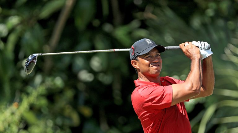 Tiger Woods is determined to be a playing vice-captain at the Ryder Cup