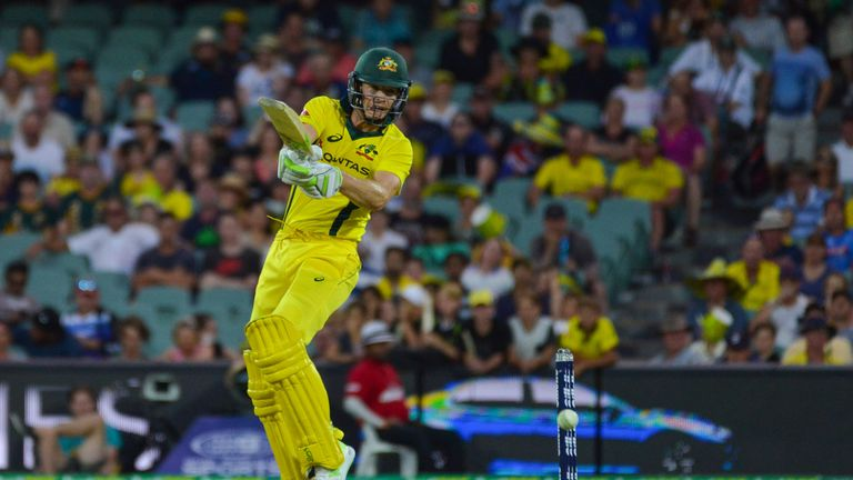 Tim Paine has become an integral member of the Australia Test and one-day squads