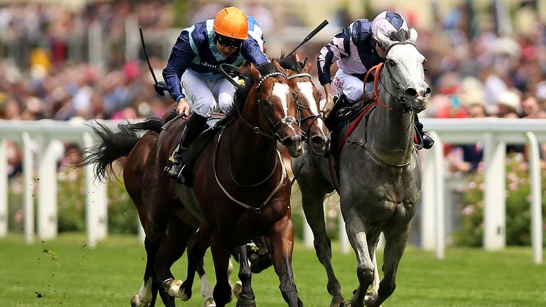 Accidental Agent (left) beats Lord Glitters in the Queen Anne