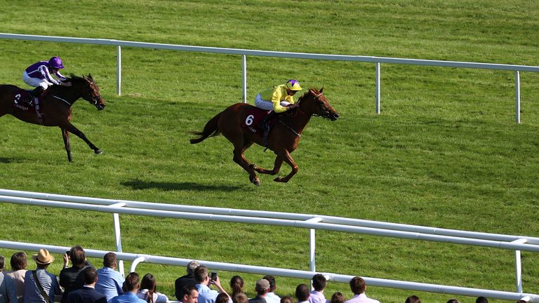 Sea of Class ridden by James Doyle
