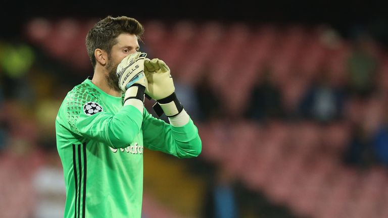 Fulham also signed goalkeeper Fabri from Besiktas earlier this summer