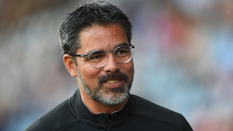David Wagner is pleased with Huddersfield's transfer business