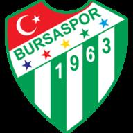 Bursaspor badge
