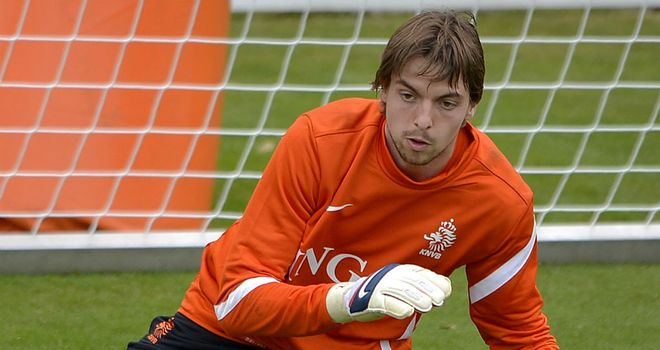 Tim Krul: Has dropped out of Holland squad after injuring elbow