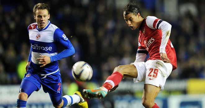 Marouane Chamakh: Has failed to make an impact at Arsenal
