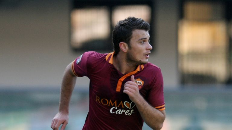 Adem Ljajic: Could move on this summer