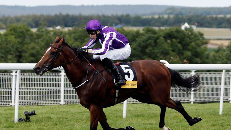 Highland Reel: Reported to be heading for the 2000 Guineas