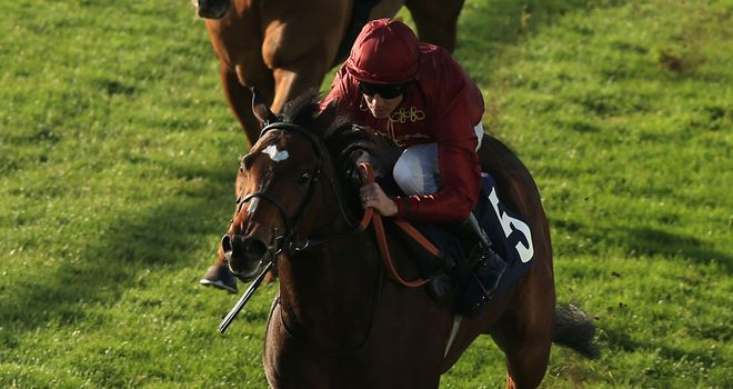 Terror, ridden by Jim Crowley, wins the Irish Stallion farms 'Bosra Sham' EBF Fillies' Stakes at HQ