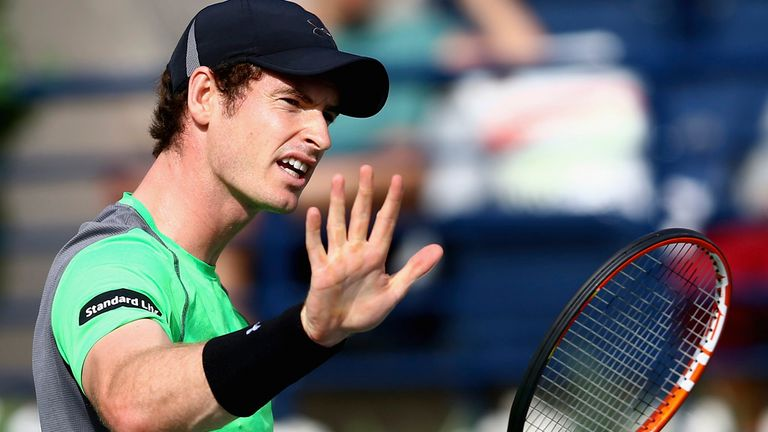 Andy Murray: Suffered surprising recent defeats