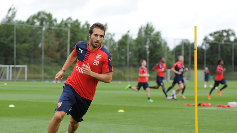 Mathieu Flamini intends to stay at Arsenal, according to Arsene Wenger