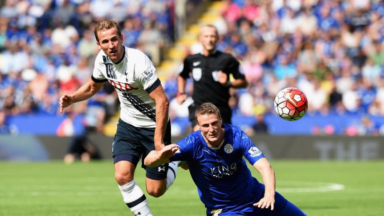 Spurs need another striker to ease the pressure on Harry Kane, says Merse