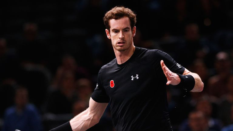 Andy Murray is likely to face David Goffin again in the Davis Cup final