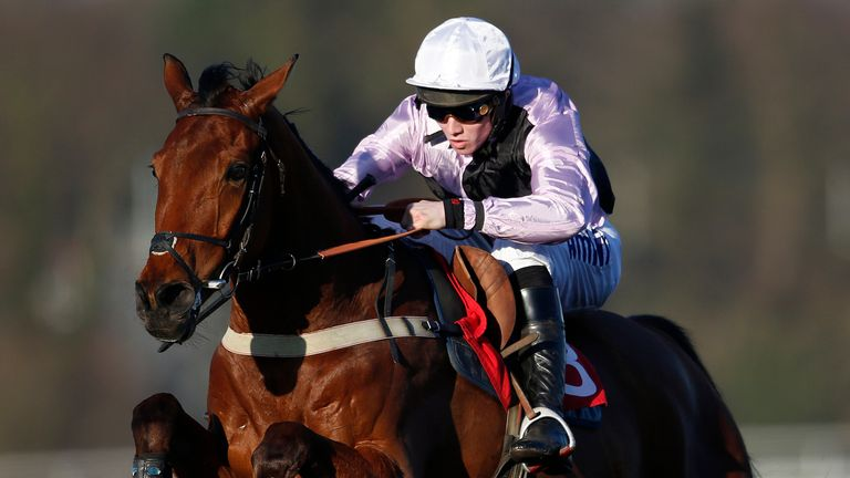 Traffic Fluide: On target for the Betfair Chase