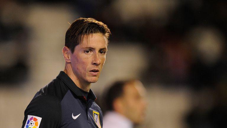 Fernando Torres hopes to continue at Atletico