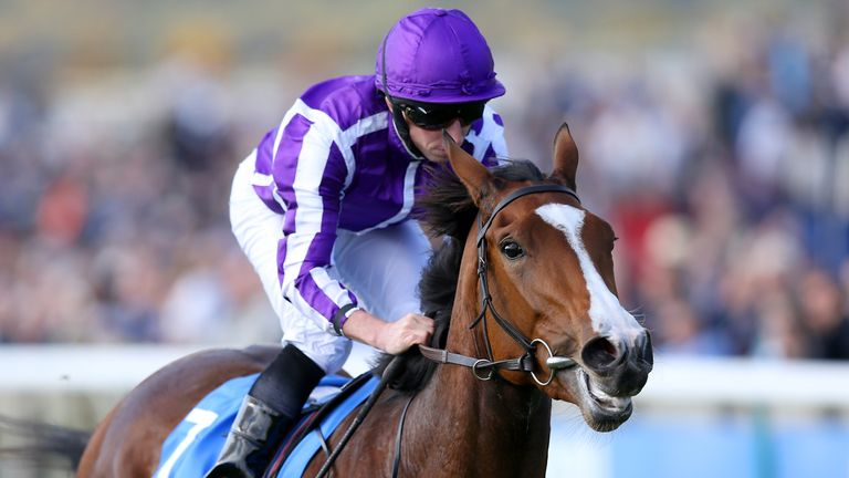 Minding is expected to be one of three runners for Aidan O'Brien