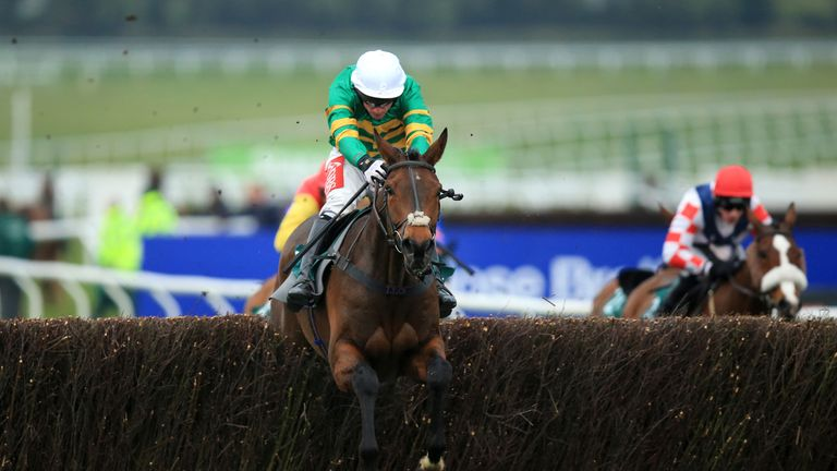 Minella Rocco: Ruled out of the Timico Cheltenham Gold Cup