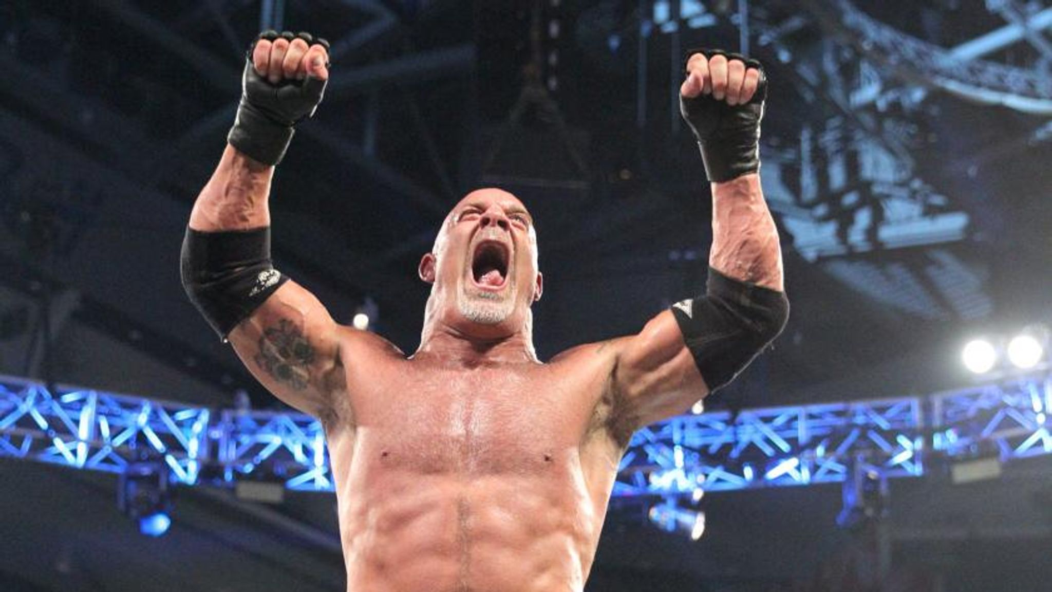 WWE: Vote for your Superstar of the week following Survivor Series