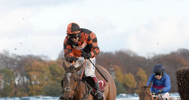 Mysteree bids for the Midlands National