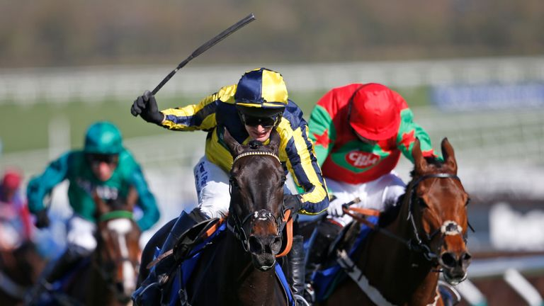 Willoughby Court - tributes paid to Cheltenham winner