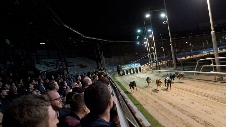 Racegoers will have no greyhound racing in London once Wimbledon closes
