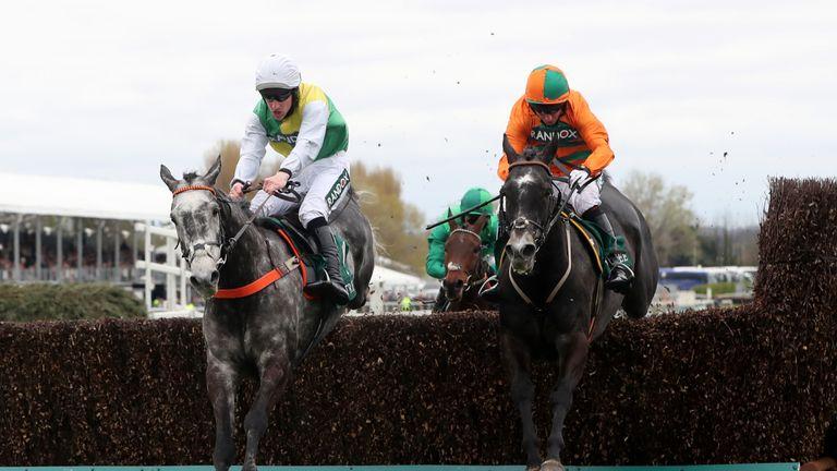 Cloudy Dream (left): Could still run at Cheltenham