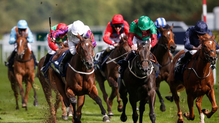Laurens (white cap) wins the William Hill May Hill Stakes