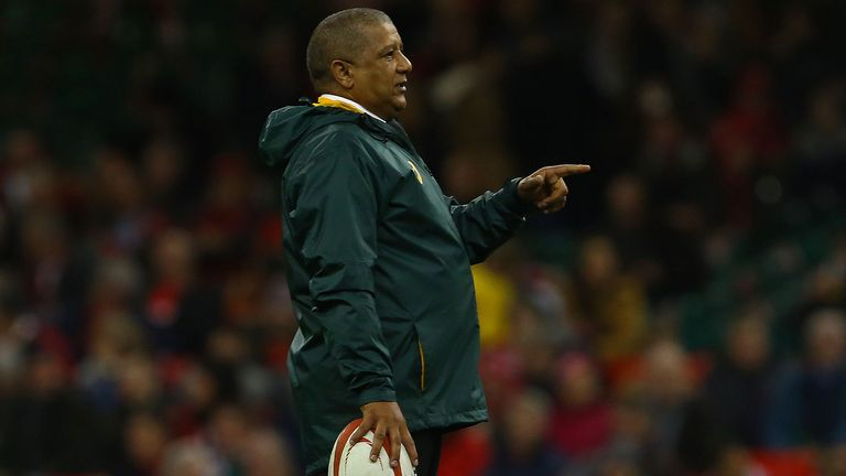 Allister Coetzee insists the future is bright for the Springboks