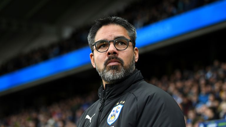 Terriers boss David Wagner was frustrated by the lengthy VAR process