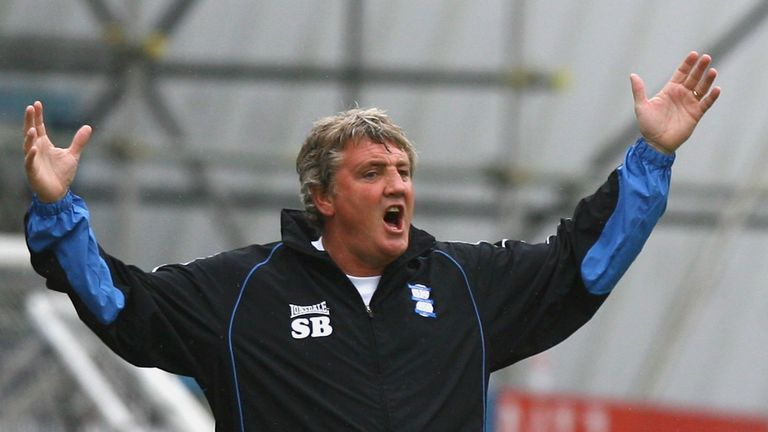 Steve Bruce's Birmingham side missed out on the Championship title on the final day of the season