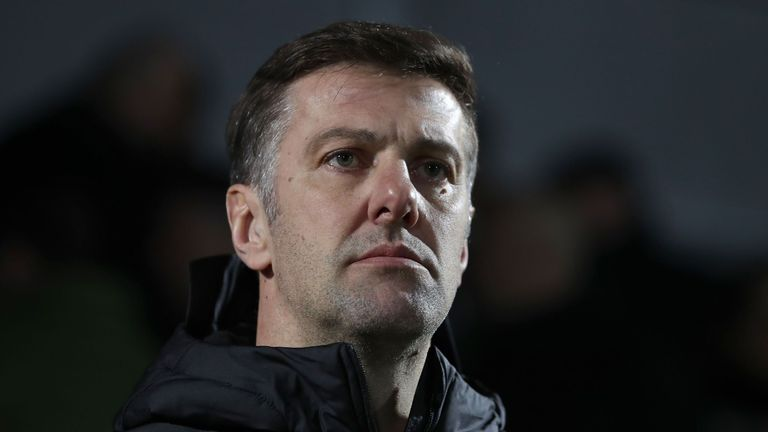Manager Mladen Krstajic is yet to take charge of a competitive game for Serbia