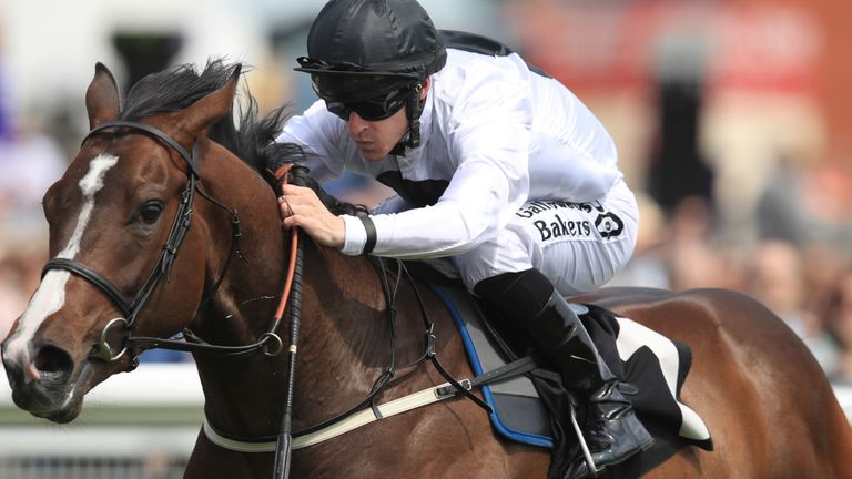 Advertise - fancied to strike at Newmarket