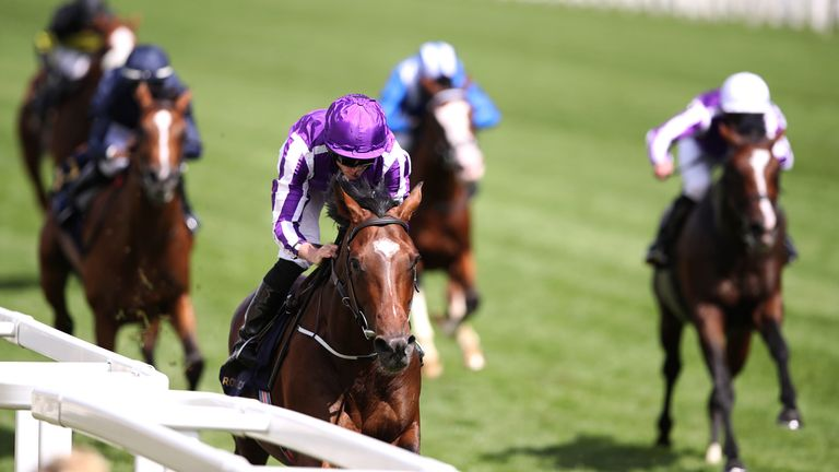 Kew Gardens - ante-post favourite for the William Hill St Leger