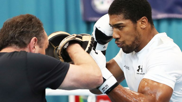 Joshua must punch at the 'right times', says trainer Robert McCracken