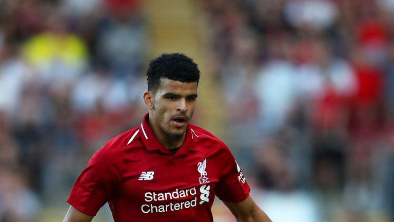 Dominic Solanke has yet to feature for Liverpool this season