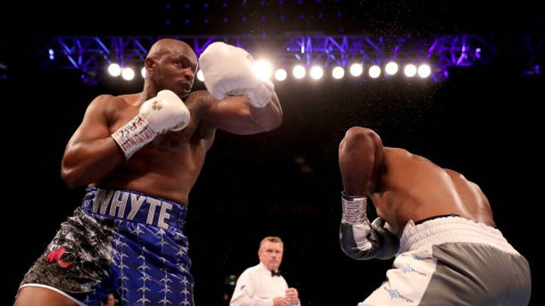 Dillian Whyte, Anthony Joshua, Mike Tyson and Deontay Wilder appear in heavyweight KO show