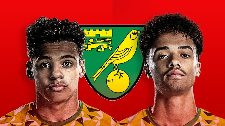 Max Aarons and Jamal Lewis have impressed for Norwich City