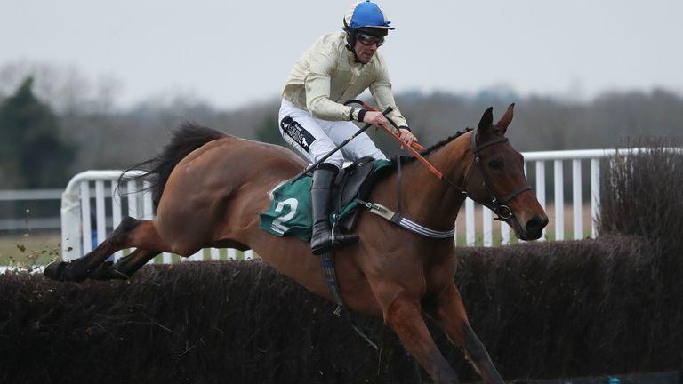 Hazel Hill ridden by Alex Edwards winning at Warwick