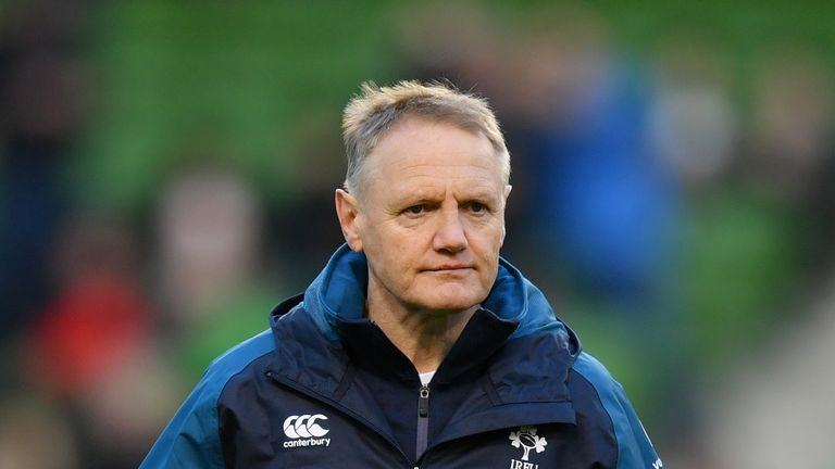 Schmidt played down the severity of the head knock, and hopes to have his fly-half back for their next Test against Italy