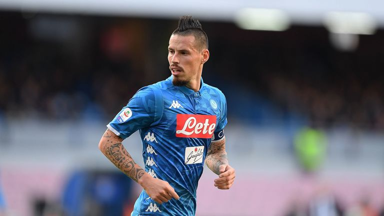 Image result for hamsik