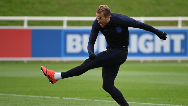Harry Kane is the perfect role model, says Redknapp