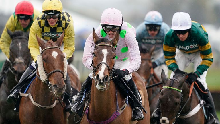 Faugheen - makes debut over fences at Punchestown
