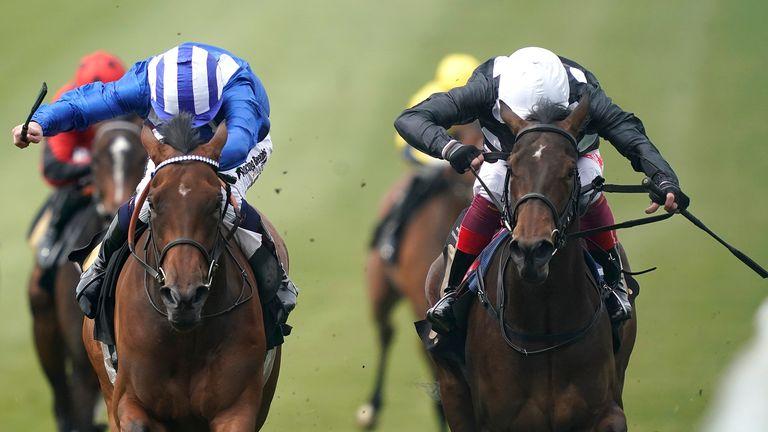 Coronation stakes betting line xfl betting