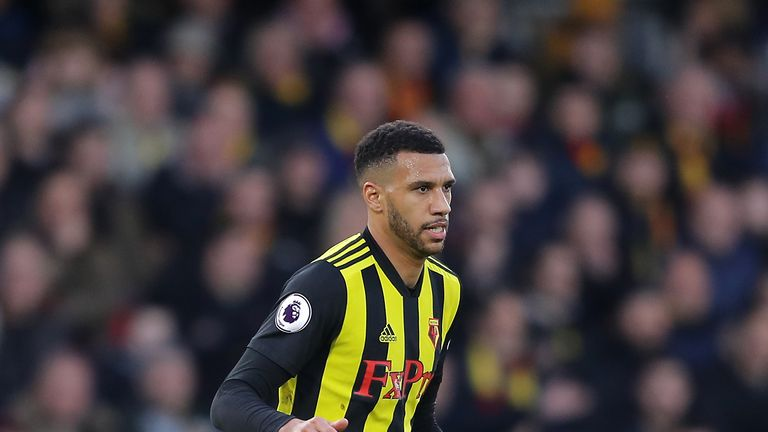 Etienne Capoue could return for Watford