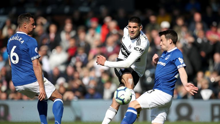 Aleksandar Mitrovic was a constant thorn in the Everton defence