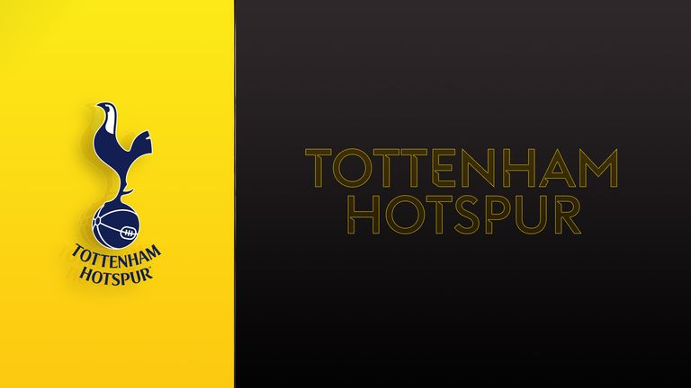 Premier League transfer window: Who should Tottenham sign?