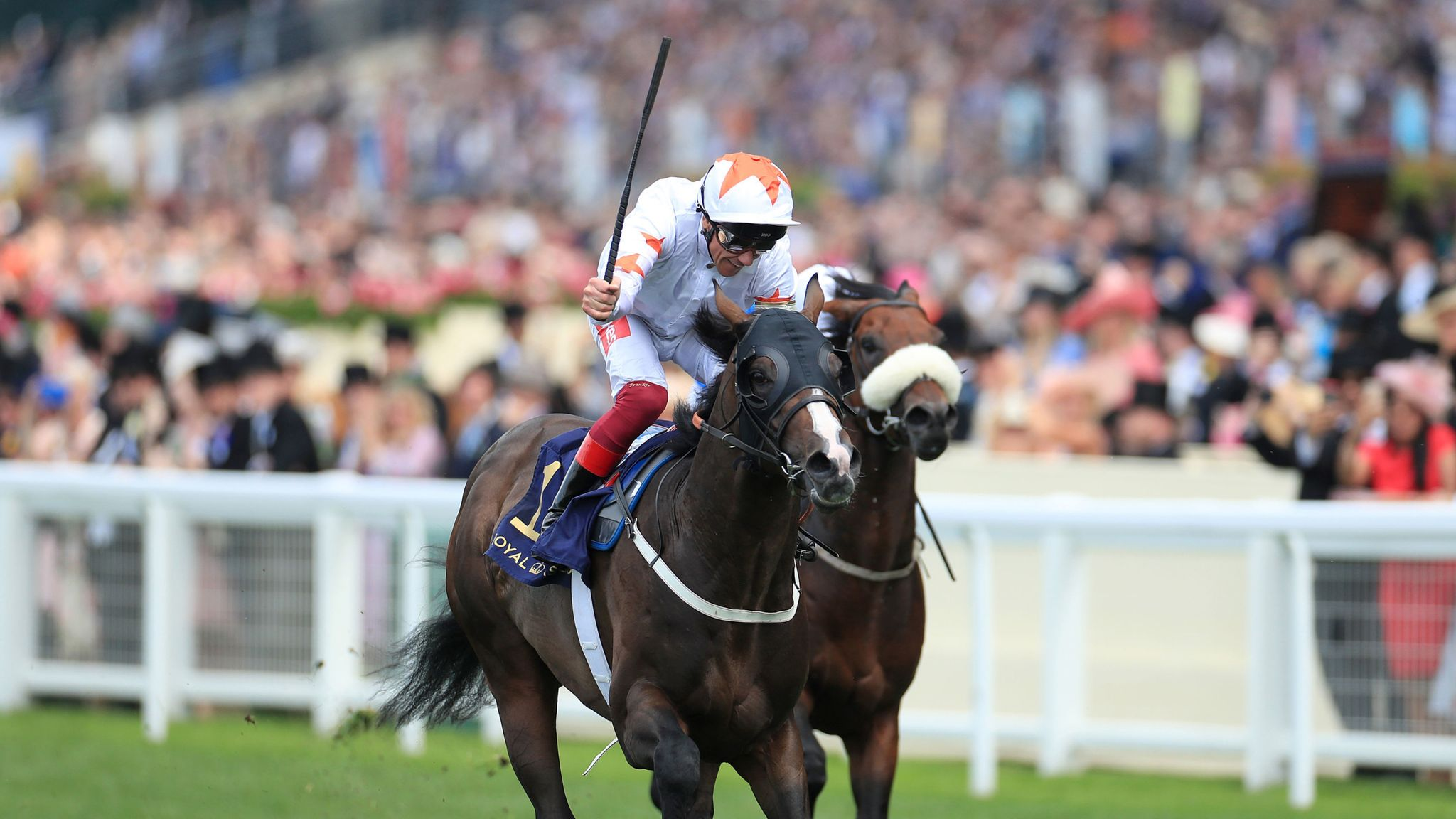 Advertise ready to return to action at Ascot