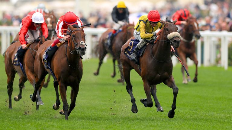 Move Swiftly ridden by jockey Daniel Tudhope on his way to winning the Duke of Cambridge Stakes