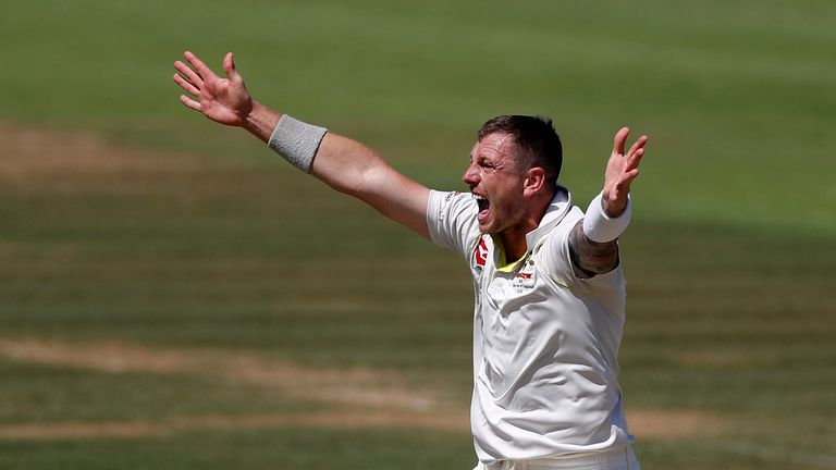 Pattinson has taken 75 wickets in 19 Tests for Australia