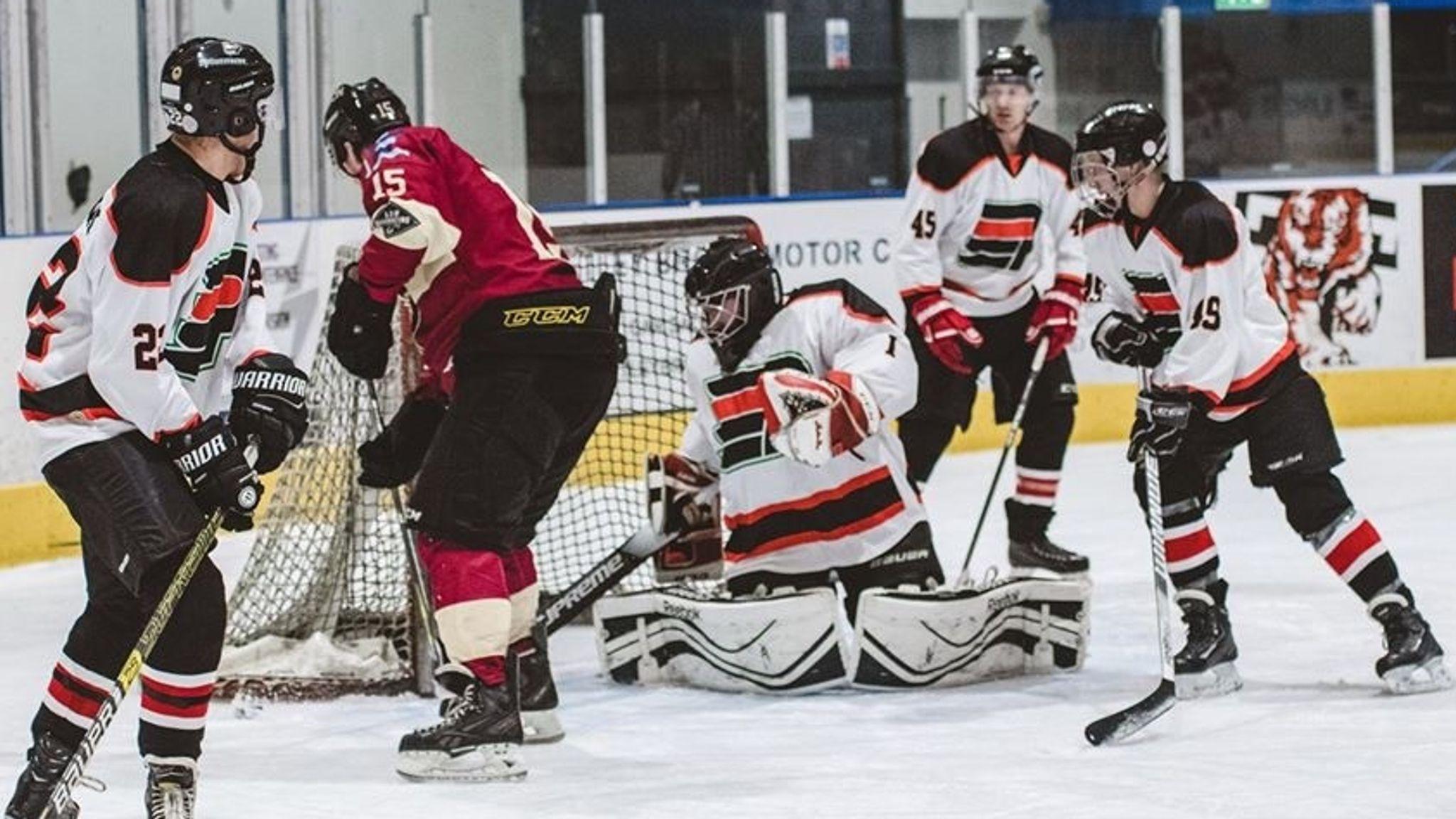 Elite league ice hockey betting btc sports betting